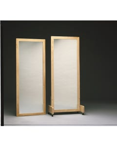 Bailey 700 Adult Posture Mirror